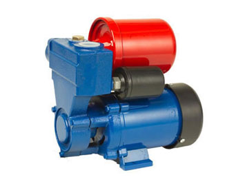 DB Series Peripheral Pumps
