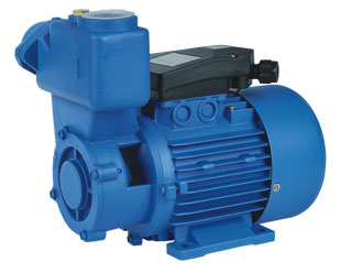 TPS Series Peripheral Pumps